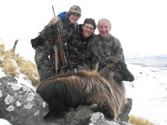 The Chesneau family: a successful hunt in New Zealand. Trophy Hunting, Animal Games, New Zealand, Deer, Lion Sculpture, Statue, Gallery, Animals, Animales