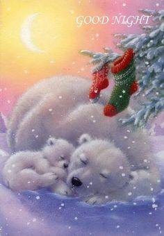 UC Polar bears and Christmas stockings