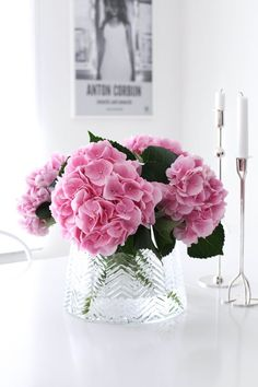 Hebrews Proverbs 1 Corinthians, 1 Corinthians Matthew one of my favorite books in the Sacred Bible, Song of SongsThe post HEMMA IGEN (MITT VITA HUS) appeared first on Dekoration. Amazing Flowers, My Flower, Pink Flowers, Beautiful Flowers, Hortensia Hydrangea, Pink Hydrangea, Hydrangeas, Deco Floral, Flower Aesthetic
