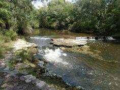 Steinhatchee falls Steinhatchee Florida, Florida Living, Sunshine State, The Neighbourhood, Waves, Ocean, Waterfalls, Camping, Magic