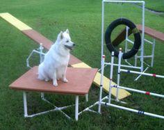 Dog Agility Ausrüstung Bauanleitung von Zippydogs auf Etsy