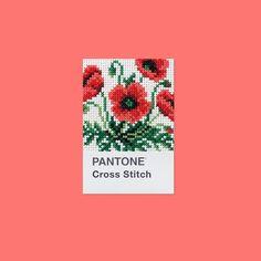 PANTONE Cross Stitch #mydailypantone #pantone