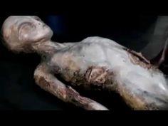 Aliens en la luna la verdad al descubierto documental en español - YouTube