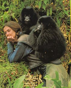 Diane Fossey gave her life to help save those animals from extinction.  She makes me cry both for the lives that she saved and the life that she lost.