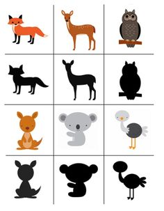 Toddler Learning Activities, Animal Activities, Montessori Activities, Science Activities, Kids Learning, Kids Zoo, Kindergarten, Animal Puzzle, Picture Cards