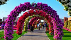 """Dubai Miracle Garden, Dubai Now the """"world's biggest natural flower garden,"""" this 72,000 sq. foot garden contains over 45 million flowers, and is maintained through drip irrigation and the recycling of waste water."""
