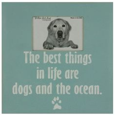 The best things in life are dogs and the ocean.