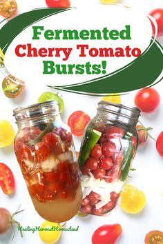 The end of harvest season is here! Do you have too many cherry tomatoes left? Well, you can make these easy and healthy fermented cherry tomato bursts! These are so delicious, and they literally burst in your mouth! They make the perfect snack or garnish for kids and adults. You'll love this easy recipe for fermented tomatoes! #healingharvesthomestead #cherrytomato #fermented #recipe #easy #healthy#harvest#tomatoes Yummy Healthy Snacks, Healthy Eating, Health And Nutrition, Health And Wellness, Kombucha How To Make, Fermentation Recipes, Homemade Wine, Emergency Food, Dehydrated Food