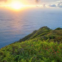 Pitcairn Island's Bounty of Beauty - Coastal Living