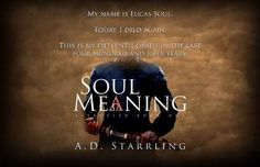 Soul Meaning - a review .. .interview AND giveaway