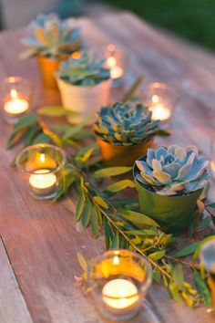 Oh, what a romantic atmosphere it would be... succulents along some candles on the tables on a summer's eve. Just picture it! Remember, your centerpieces don't necessarily need to be flowers! Source.