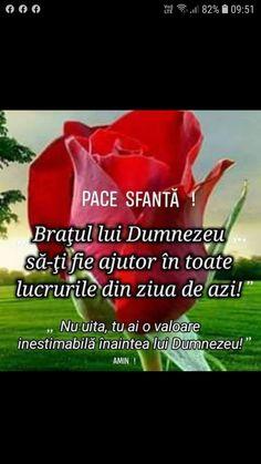 este posibil să beți o trandafir în varicoză)