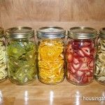 How To Make Healthy Dehydrated Fruit Snacks
