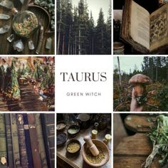 Zodiac Witches: Taurus-Green Witch collage zodiac Note to Self Taurus Art, Taurus Bull, Astrology Taurus, Taurus Ascendant, Taurus Woman, Astrology Chart, Libra, Zodiac Art, Zodiac Signs