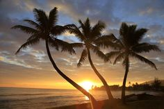 Sunrise, Windward Oahu, Hawaii