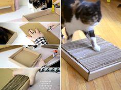 Faça você mesmo: arranhador de papelão para gatos