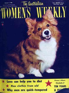 More gratuitous vintage dog pictures