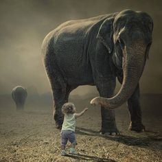 54 ideas african children photography friends for 2019 Elephant Facts, Elephant Love, Funny Elephant, Learn Photoshop Online, Animals Beautiful, Cute Animals, Beautiful Creatures, African Children, Save The Elephants