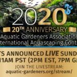 AGA to Livestream 20th Anniversary Aquascaping Contest Results Aquascaping, Judges, 20th Anniversary, First Time, Magazine, 20th Birthday, 20 Year Anniversary, Magazines, Warehouse