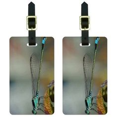 Blue Dragonfly Dragon Fly Luggage Tags Suitcase Carry-On ID, Set of 2, Multicolor