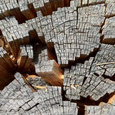 Stump crumble