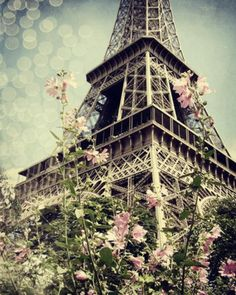 eiffel tower...It is a truly magnificent structure and even more beautiful painted with the blush of Parisienne spring flowers.