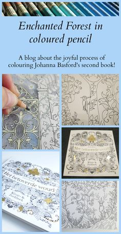 Look what I got! Johanna Basford's Enchanted Forest! I started colouring in the book immediately, but the paper is a lot smoother than the paper in my Secret Garden copy. So I'm colouring a lot to find the best way of colouring this type of paper with my coloured pencils. There's a video in this blogpost.