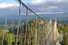 Head to the new Adventure Ziplines in Pigeon Forge