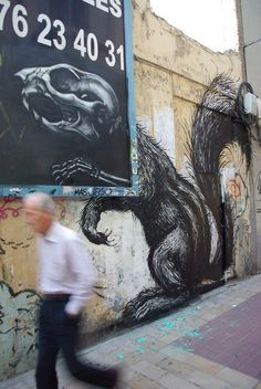 Roa is one of the most prolific street artists today, oftentimes painting animals natural to a specific location/setting.