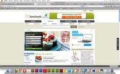 smulweb.nl is voor mij een volle site die moeilijk is te overzien. je ziet veel dingen staan en daardoor word het wat chaotischer. de vormgeving is wat aan de saaie kant.
