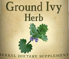 GROUND IVY HERB All Natural Tincture for Normal Excretion of Lead & Healthy Respiratory Function Herbal Nutritional Dietary Supplement by NaturalHopeHerbals on Etsy
