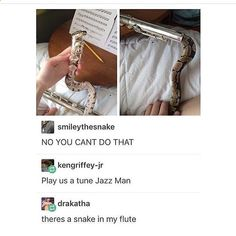 """""""There's a snake in my flute"""" haha lol Toy Story; Stupid Funny, Funny Cute, Funny Jokes, Hilarious, Funny Stuff, Random Stuff, Funny Things, Animal Memes, Funny Animals"""