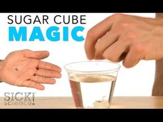 Sugar Cube Magic - Sick Science! #216 - YouTube - Sokerilasi taika Science Toys, Science Party, Weird Science, Science For Kids, Teaching Science, Teaching Resources, Teaching Ideas, Magic Tricks For Kids, Magic Kids