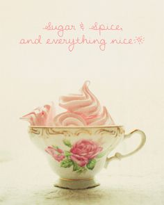 Sugar & Spice and everything nice, that's what little girls are made of. This is the perfect photo to decorate your little girls' room.