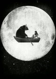 Bear, take me to the moon