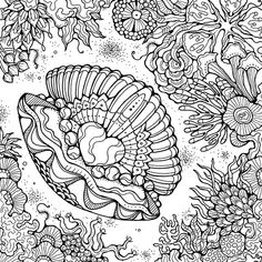 The ocean is FULL of interesting creatures and colors. The ocean and all of the animals in it makes a wonderful coloring subject for adults. Get creative with our ocean coloring pages. Ocean Coloring Pages for Adults Ocean Coloring Pages, Emoji Coloring Pages, Monster Coloring Pages, Coloring Pages For Grown Ups, Abstract Coloring Pages, Fish Coloring Page, Horse Coloring Pages, Pattern Coloring Pages, Printable Adult Coloring Pages