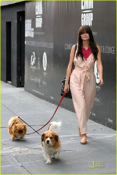 Mischa Barton with Charlie and Ziggy  For supplies fit for any pet celeb visit wooftown.com