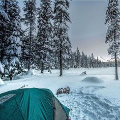 At the end of the day it's always worth it  @djaffe #mthood #winter #camping #snowshoeing #tubbs #mountains #snow #oregon