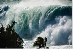 A big wave shot from a higher perspective.Event: Quiksilver in Memory of Eddie AikauLocation: Waimea Bay, North Shore (Oahu, Hawaii) North Shore Beaches, North Shore Oahu, Waimea Bay, Big Waves, Ocean Waves, Giant Waves, Clark Little Photography, Big Wave Surfing, Surf Wave