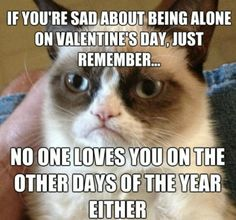 """If you're sad about being alone on Valentine's Day, just remember... no one loves you on the other days of the year either."""