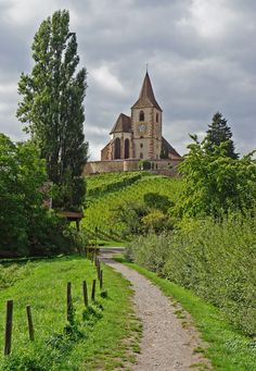 """Hunawihr through the eyes of claudeD - """"A winegrowing community on the Wine Route, at an altitude of 260 m, Hunawihr now has 504 inhabitants and has earned 'Most Beautiful Villages in France' and 'Green Holiday Resort' status. Alsace, Sainte Marie, Holiday Resort, Beaux Villages, Northern Italy, South Of France, Beautiful Landscapes, Ideas Para, Countryside"""
