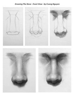 Drawing the Nose - Front view step by step by Cuong Nguyen https://www.facebook.com/icuong?fref=photo How To Draw A Nose, Human Face Sketch, Male Face Drawing, Human Drawing, Human Art, Drawing Practice, Shading Faces, Shading Drawing, Draw Faces