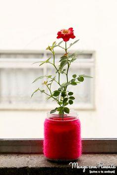 Minha nova plantinha: Rosinha, a minha mini-rosa linda ♥