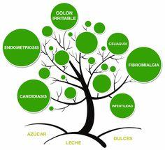 Dietas terapéuticas: TRATAMIENTO DIETÉTICO PARA CANDIDIASIS INTESTINAL
