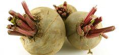 Úvod do kuchyne sčervenou repou Beetroot Recipes, Beet Salad Recipes, Love Beets, Fresh Beets, Garlic Salad Recipe, Beetroot Benefits, Healing Herbs, Nutrition Guide