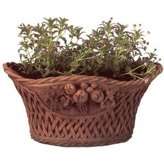 Thos. Baker Basket Weave Flower Planter (310 CAD) ❤ liked on Polyvore featuring home, outdoors, outdoor decor, plants, flowers, fillers, garden, nature, basket weave planter and garden planters