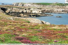 Pointe de Penn Ar Ru Meur (Ile d'Ouessant, Bretagne)