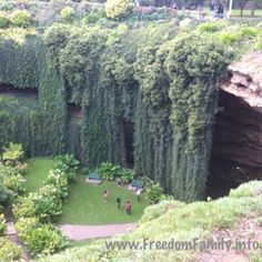 Umpherston Sink Hole in Mt Gambier, South Australia - it's like a whole new wonderland! South Australia, Australia Travel, The Places Youll Go, Places To See, Wonderful Places, Beautiful Places, City Of Adelaide, Australian Photography, Camping Set Up