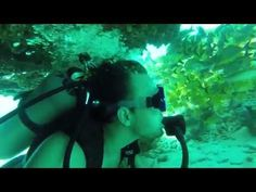 Key Largo Scuba Trip - Gold Star Teen Adventures - http://www.florida-scubadiving.com/florida-scuba-diving/key-largo-scuba-trip-gold-star-teen-adventures/