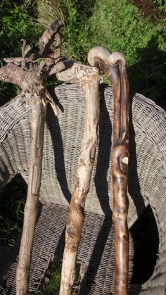 Three Stages of Holly Hand Carved Walking Sticks, Walking Sticks And Canes, Walking Canes, Wood Hiking Stick, Walking Staff, Wizard Wand, Driftwood Projects, Forest Art, Wood Carving Art
